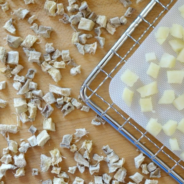 Chopped raw and dehydrated ginger on a dehydrator rack