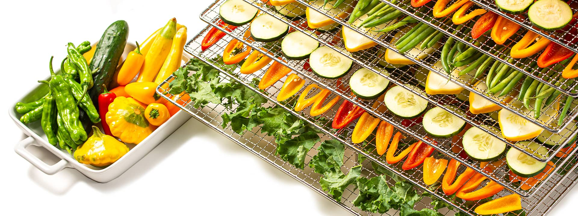 Colorful dried vegetables on dehydrator shelves
