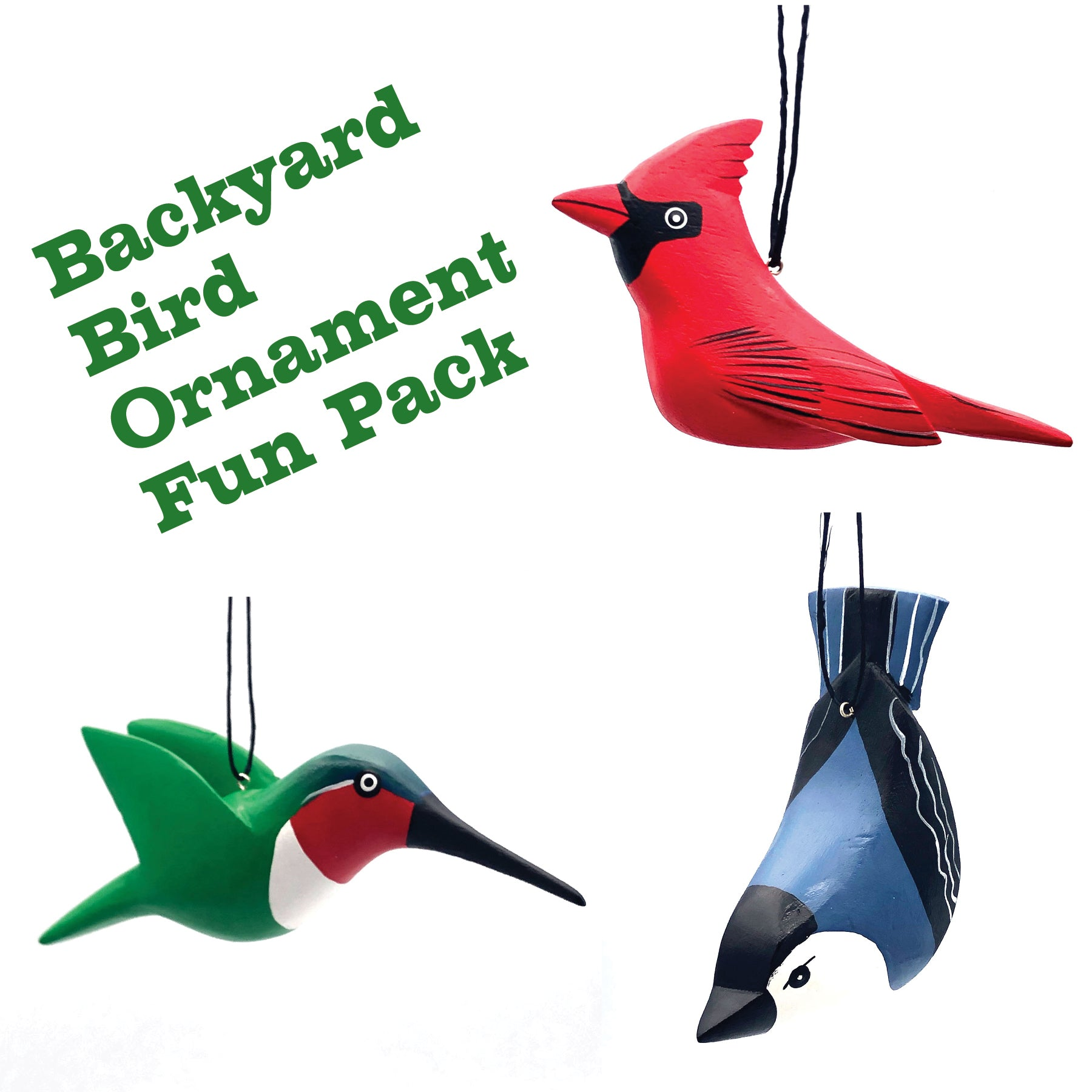 Backyard Bird Ornament Fun Pack