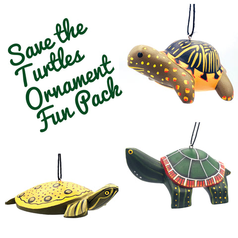 Save the Turtles Ornament Fun Pack