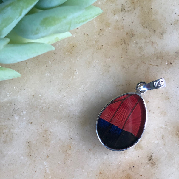 Claudina Agrias Butterfly Pendant
