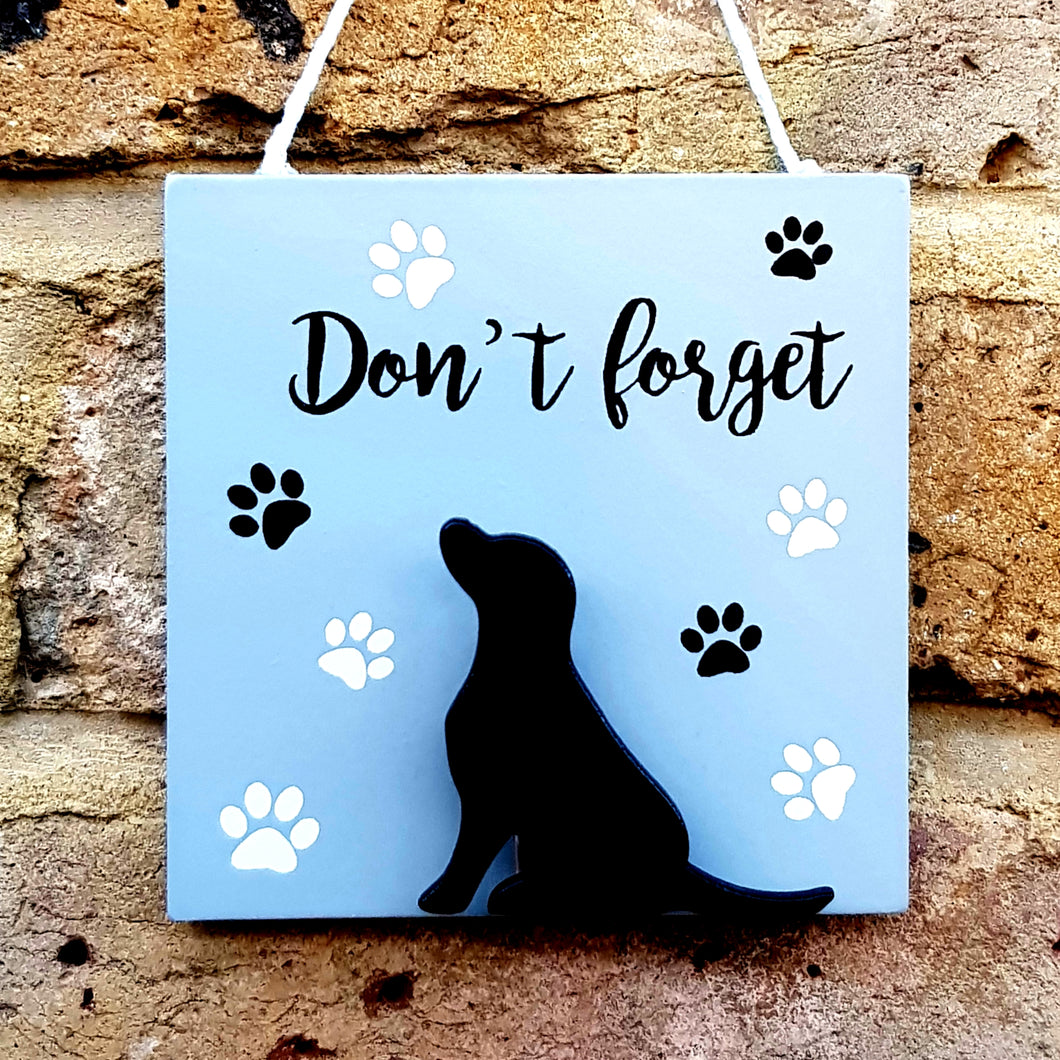 Don't forget / Dog