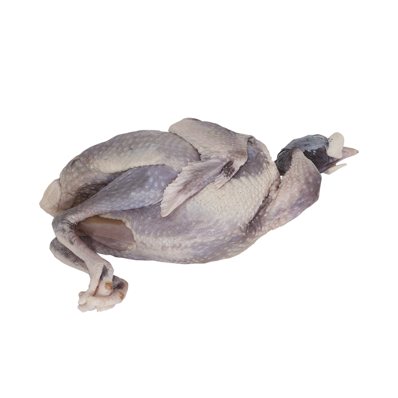 Guinea Fowl (Whole)