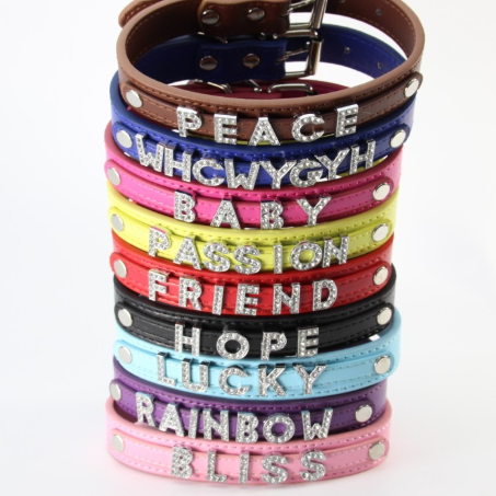 Personalized dog name collar