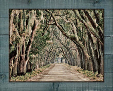 Load image into Gallery viewer, Live Oaks Canopy, -Belfair Plantation Bluffton SC - On 100% Linen