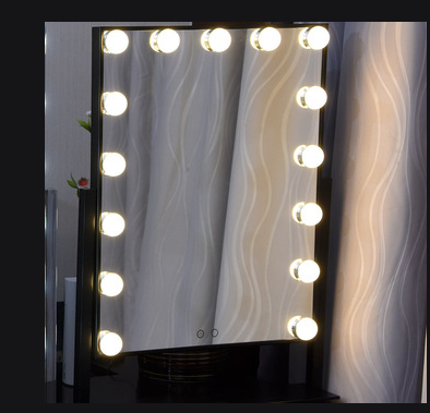 Vanity Mirror with 15 Dimmable Lights