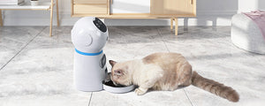 Auto Pet Feeder - Food Dispenser
