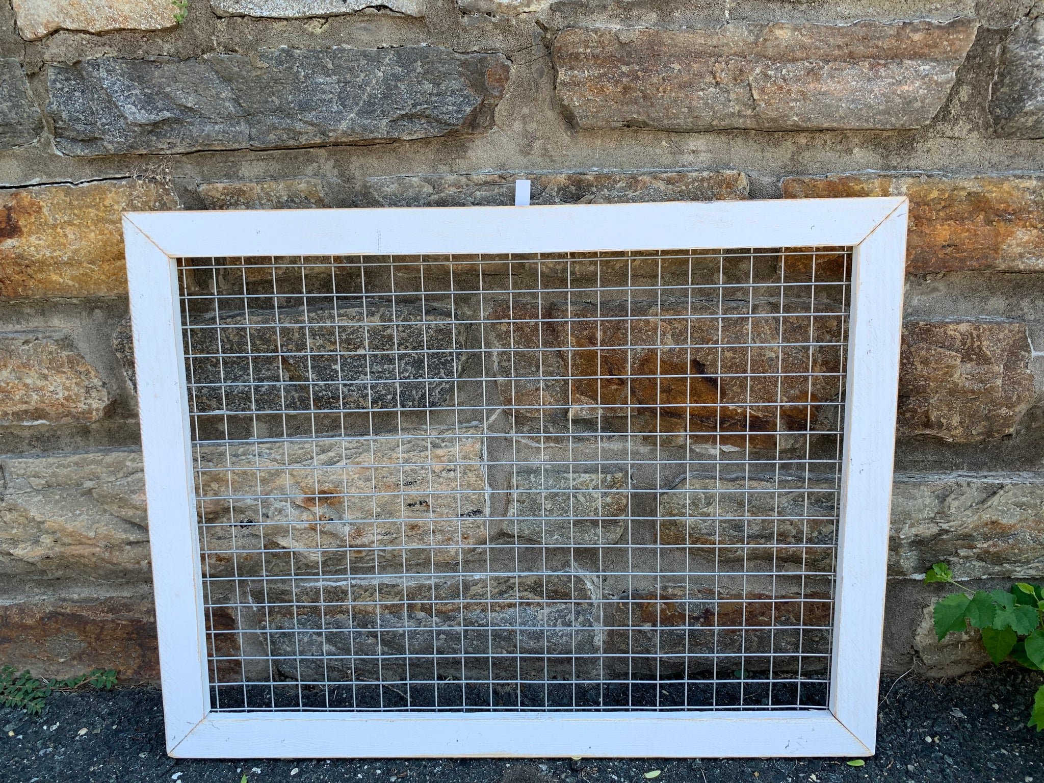 Wire Mesh Frame