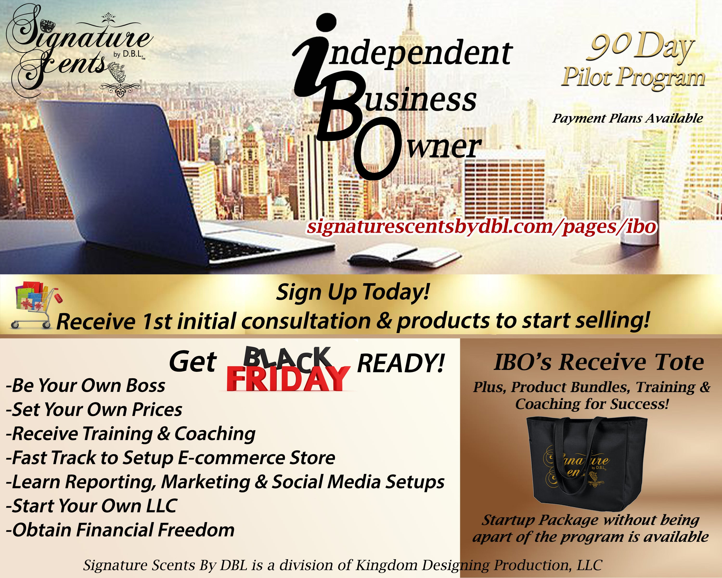 Independent Business Owner 90 Day Pilot Program