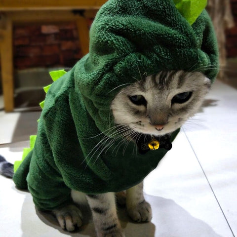 Pet Dragon Warm Coat