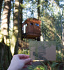 Treehouse Boxed Cards Set
