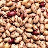 Load image into Gallery viewer, Pinto Beans - 1# Bag