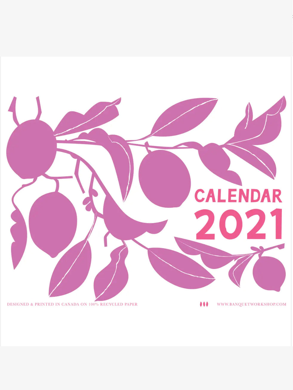 2021 Beautiful and Delicious Fruits Calendar