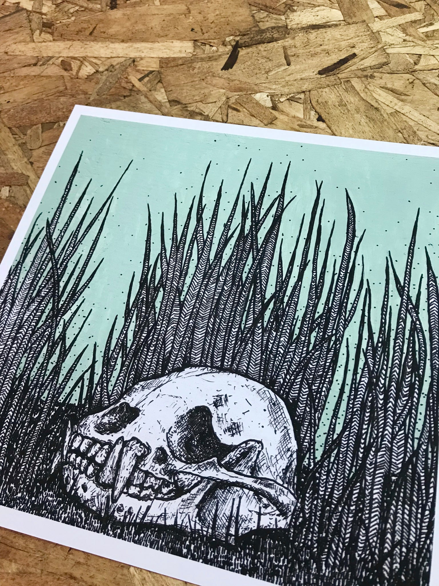 Sun Bear in Weeds 8-8in Giclee Print