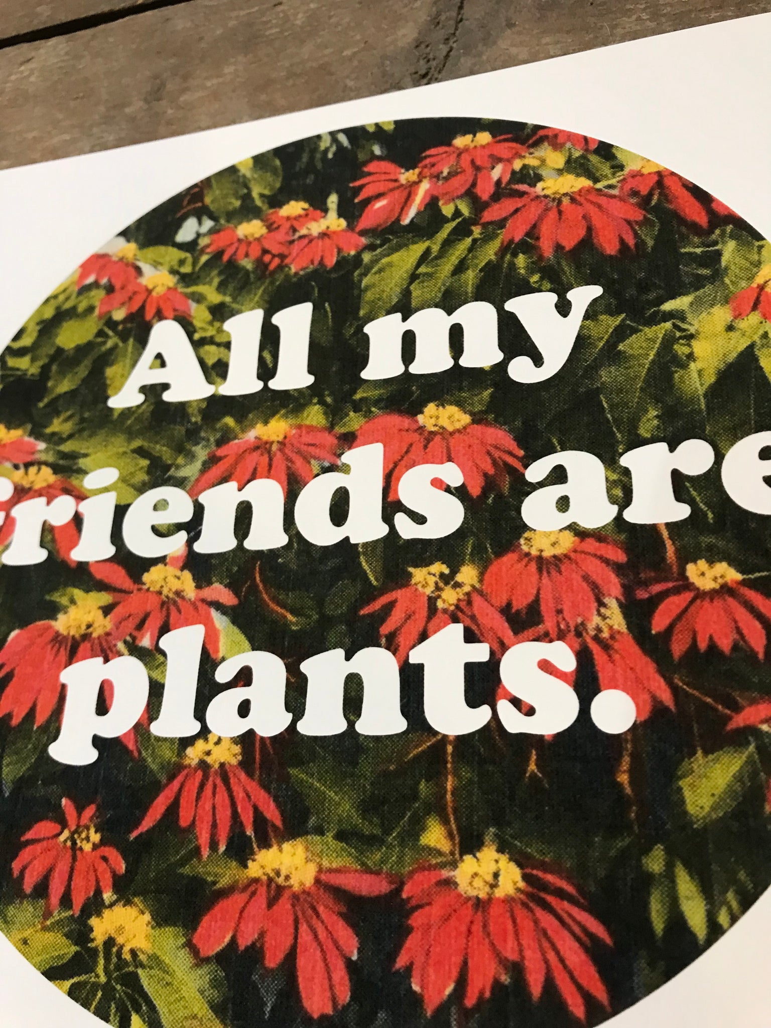 "All My Friends Are Plants 8"" by 8"" Giclee Print by Kris Johnsen"