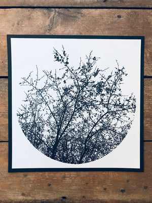 Time Forgot - Tree Silhouette 12.5x12.5in Screen Printed Art by Kris Johnsen