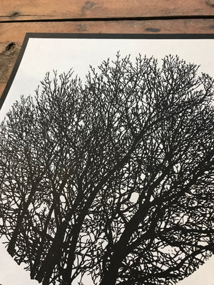 No Visitors - Tree Silhouette 12.5-12.5in Screen Printed Art by Kris Johnsen