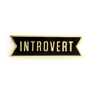 Introvert Enamel Pin