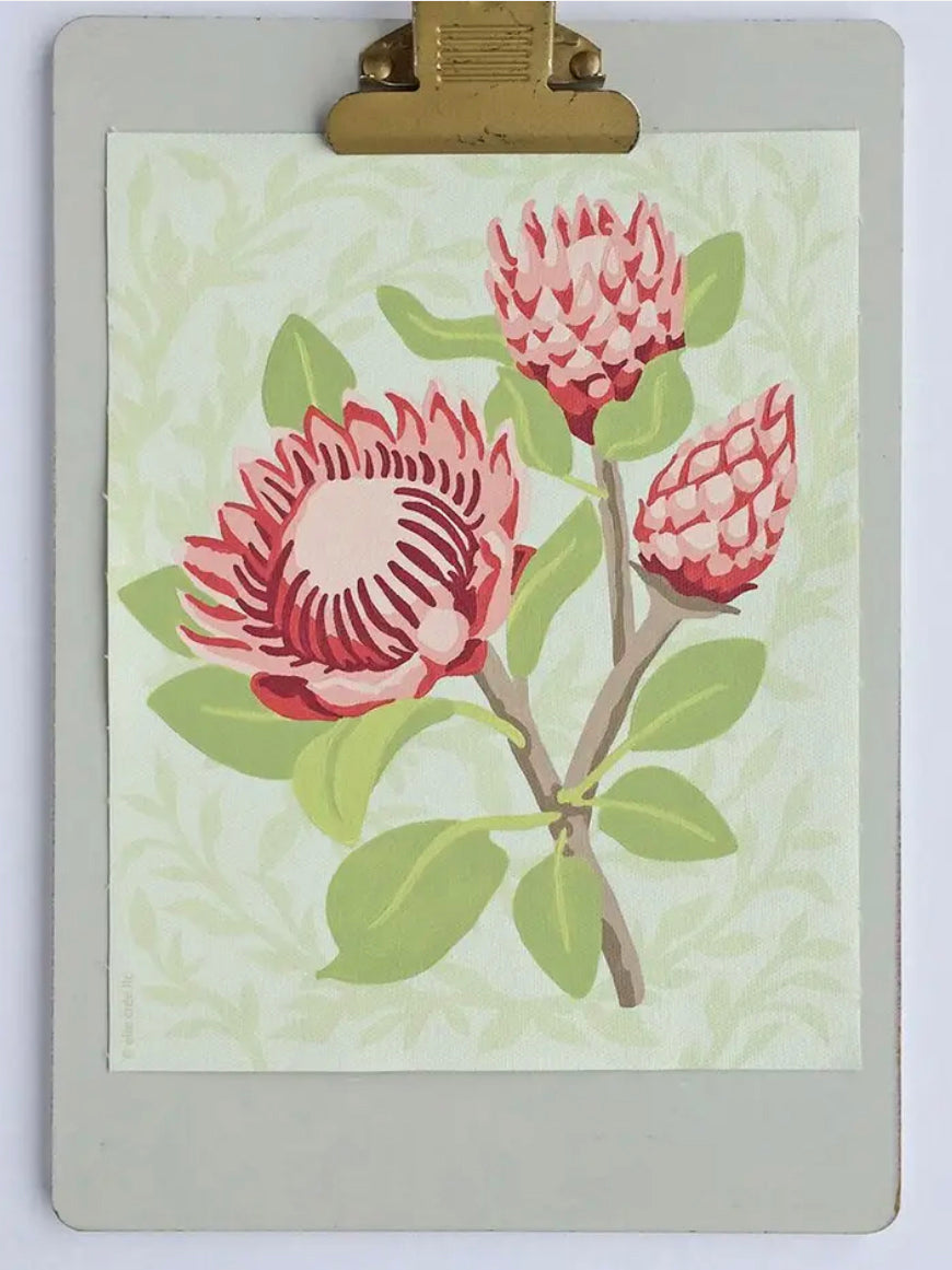 King Protea Blooms Paint-by-Number Kit