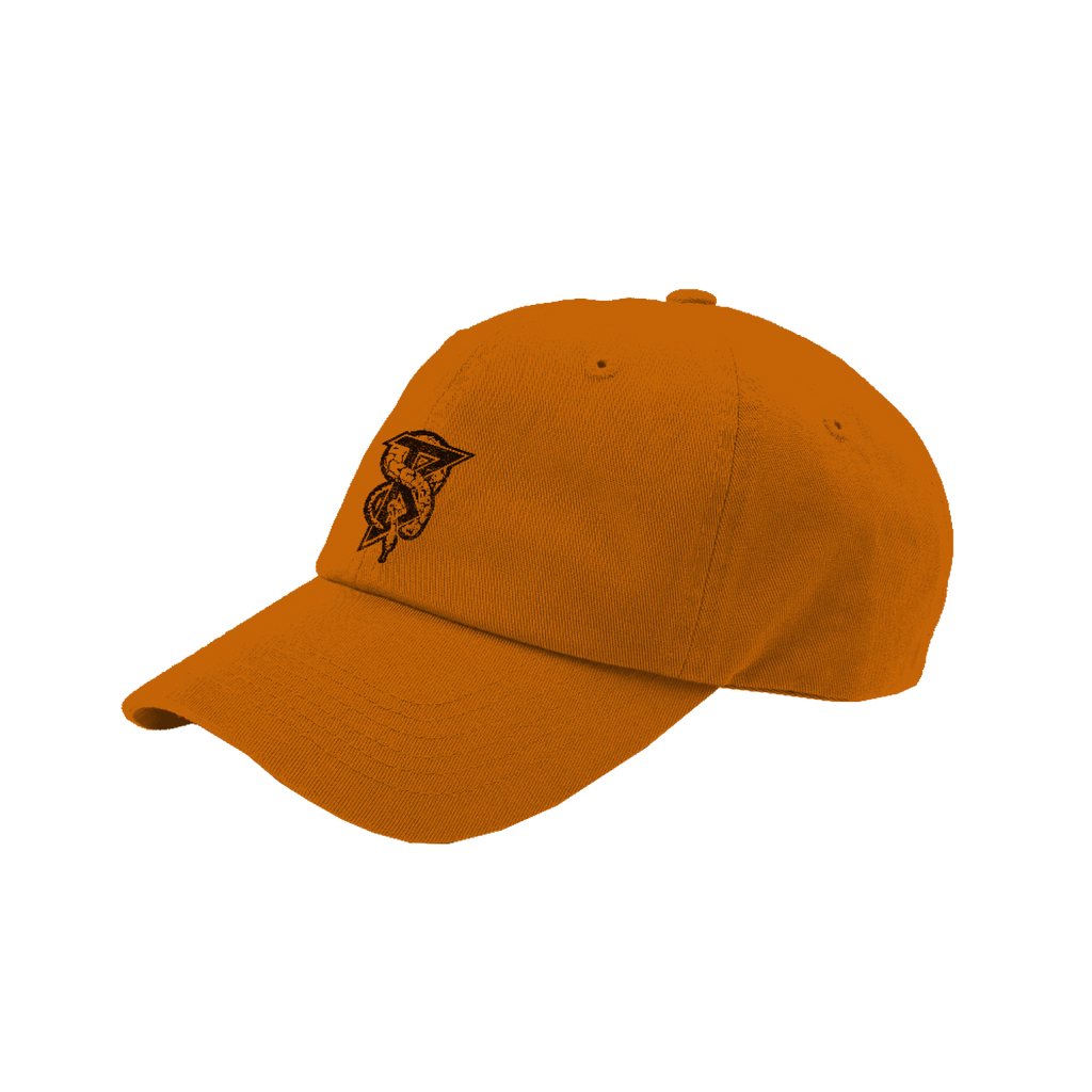 Beartooth - Snake B Dad Hat (Orange)