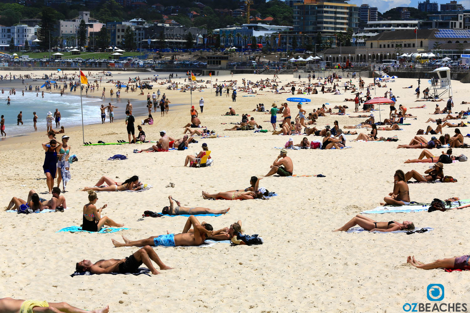 Bondi Beach, Sydney NSW