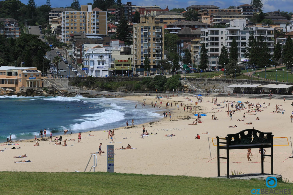 A bench with a view - northern end of Coogee Beach