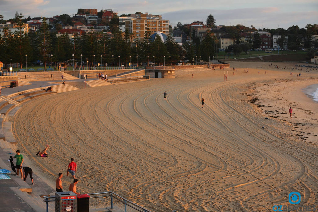 Randwick Council grooms Coogee Beach almost daily