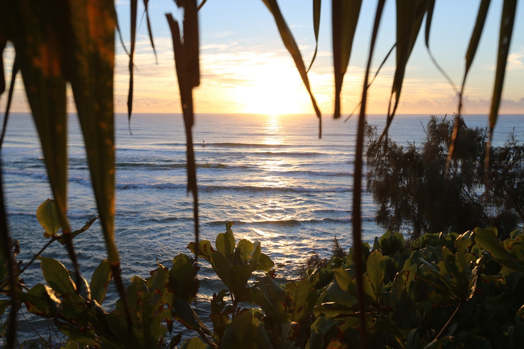 Looking through the trees at Coolum Beach Sunshine Coast QLD