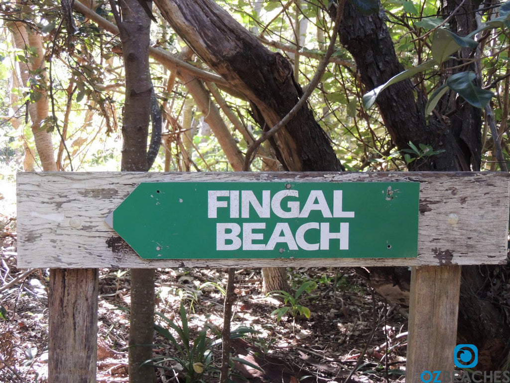 Fingal Beach sign located in the littoral rainforest on Fingal Head