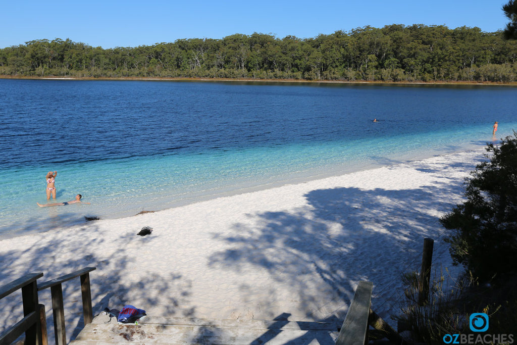 You can see where Blue Lake on Fraser Island gets its name from