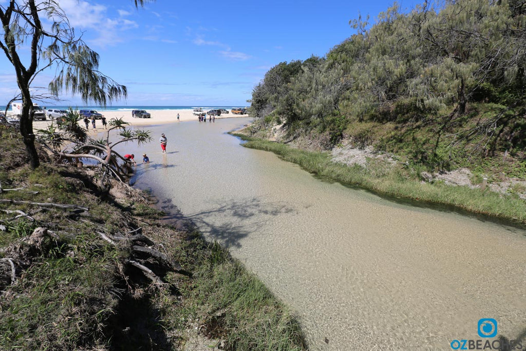 Eli Creek on Fraser Island is a popular spot for tour buses and day trippers to stop for lunch