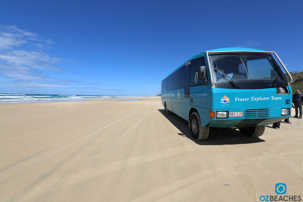 Tour buses are the way to get around Fraser Island if you don't have a 4wd