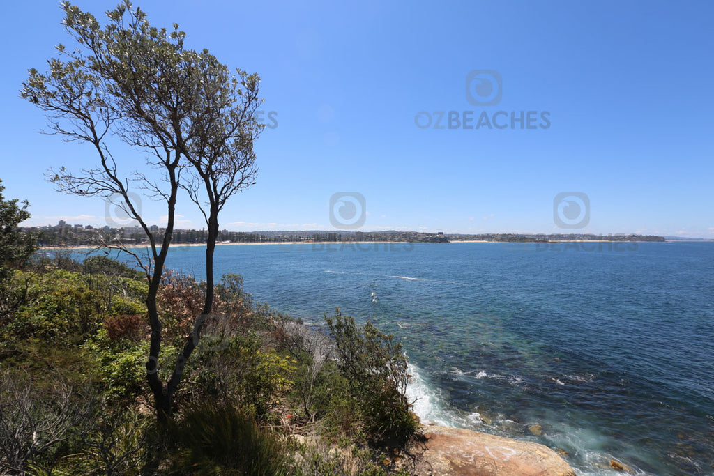 Looking north from the headland at Shelly Beach