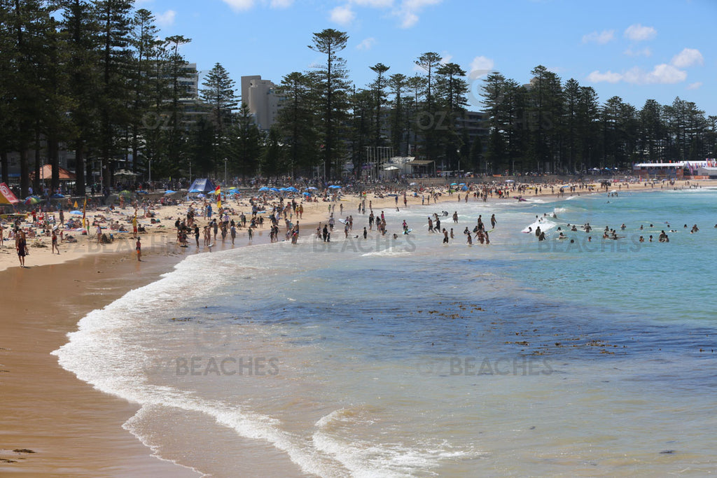 A typical day down at Manly Beach