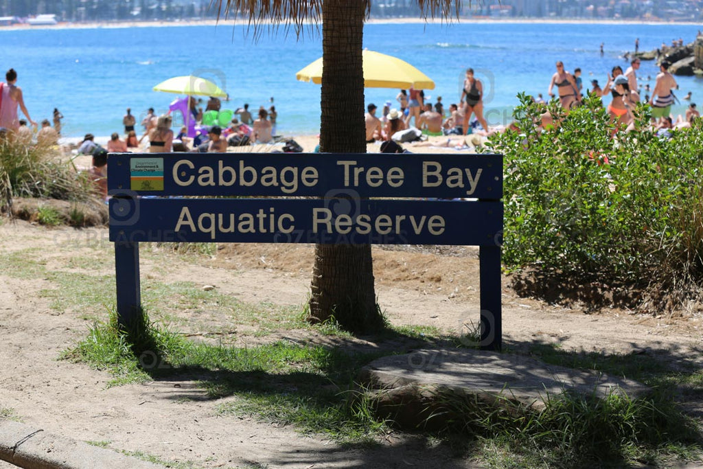 Cabbage Tree Bay Aquatic Reserve