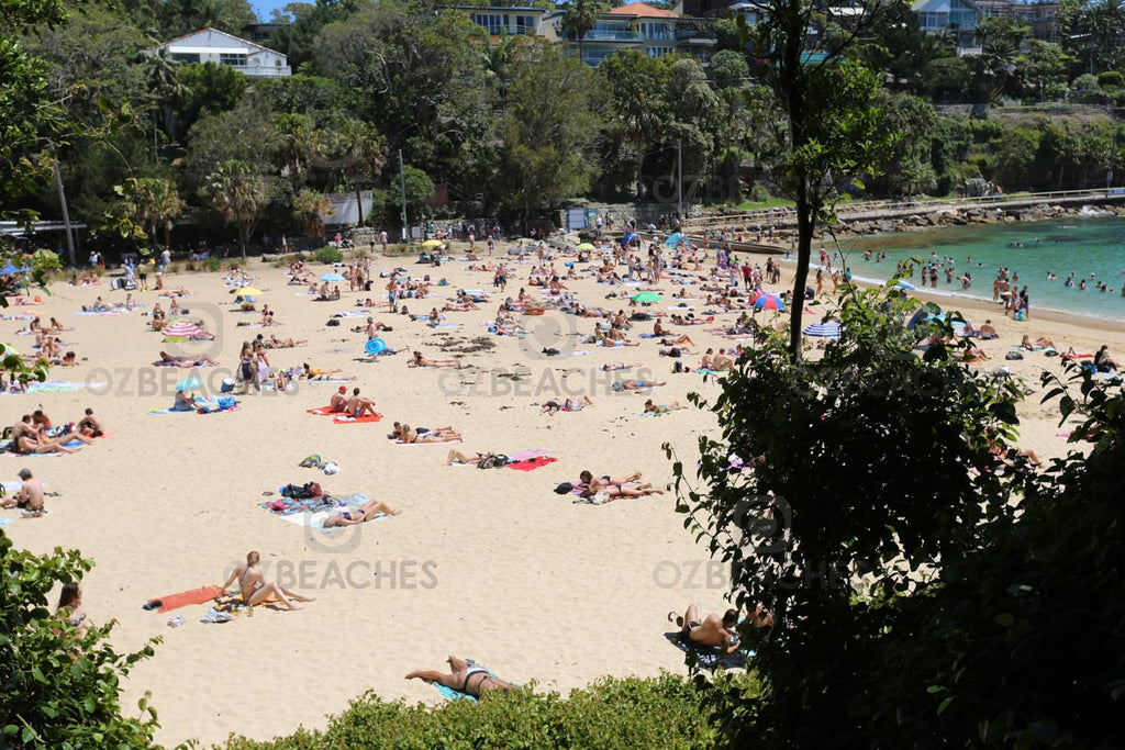 Shelly Beach is hugely popular on weekends
