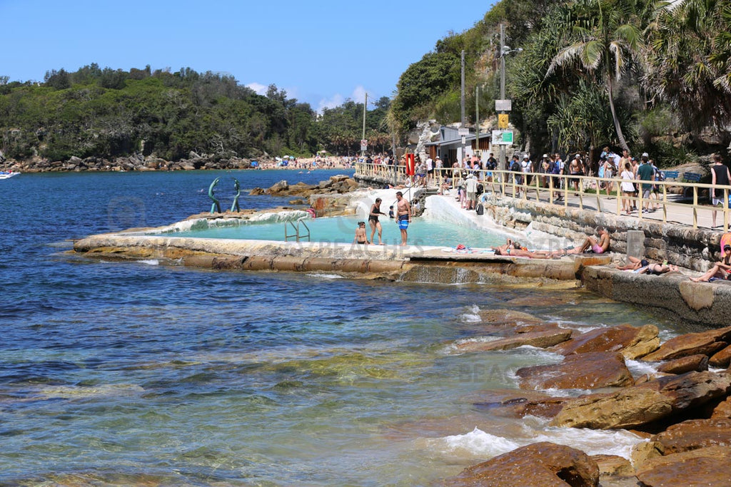 A tropical looking rockpool near Manly Beach