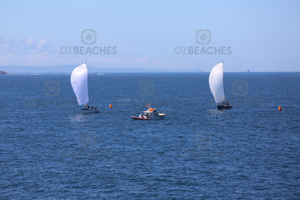 Yachts racing at Manly Beach