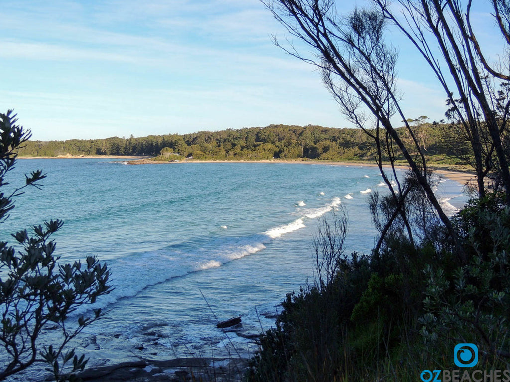 Looking over Myrtle Beach NSW from the northern headland