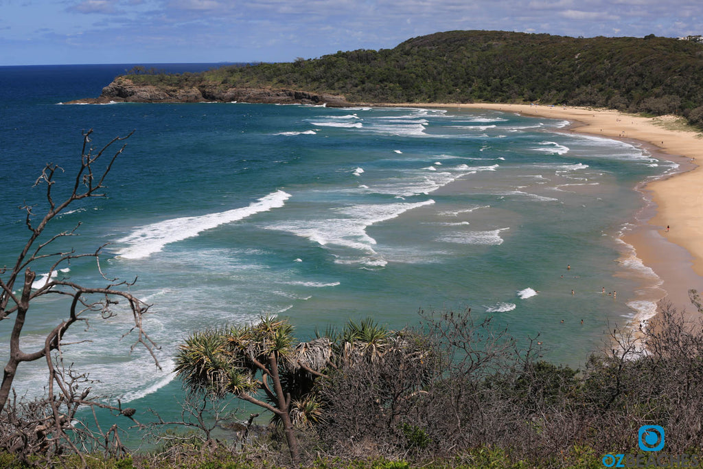 Noosa Heads coastal walk at Alexandria Bay