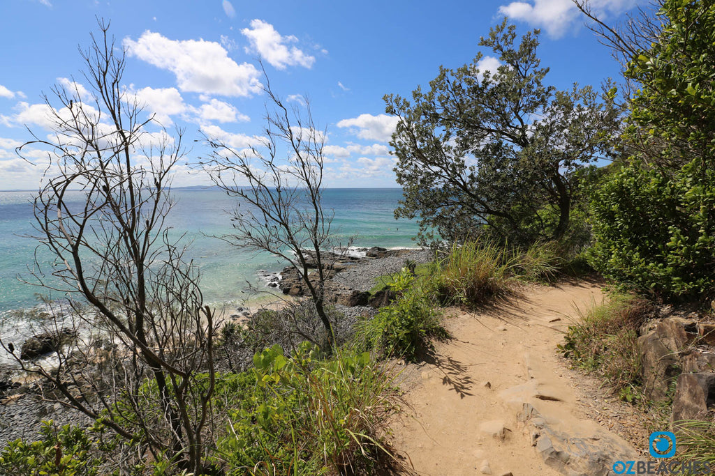 Noosa Heads National Park coastal walk