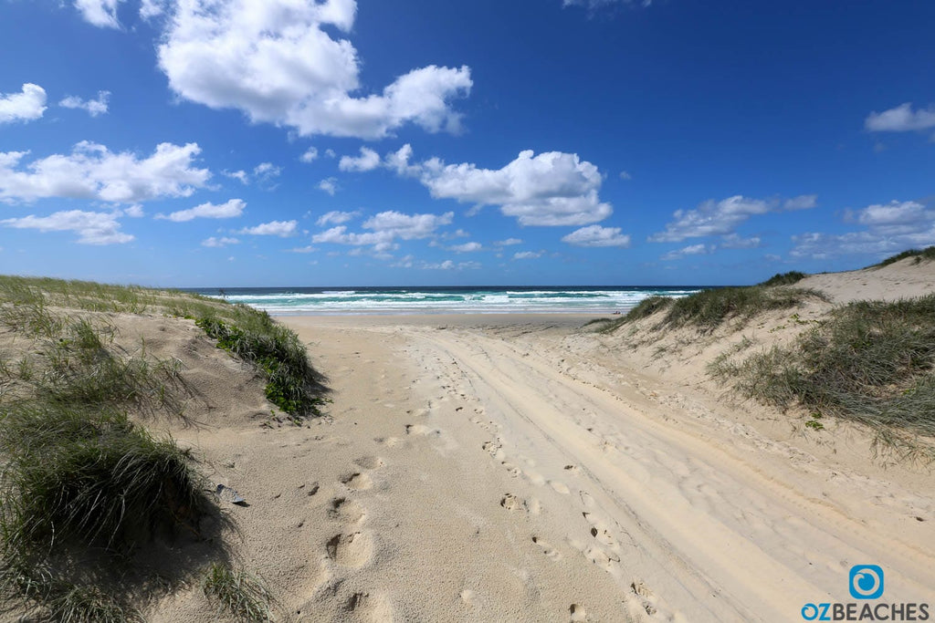 4wd track on North Stradbroke Island