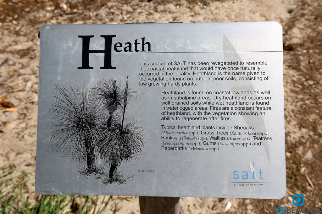 Boardwalks and dedicated community groups help the health lands regenerate at Salt Beach NSW