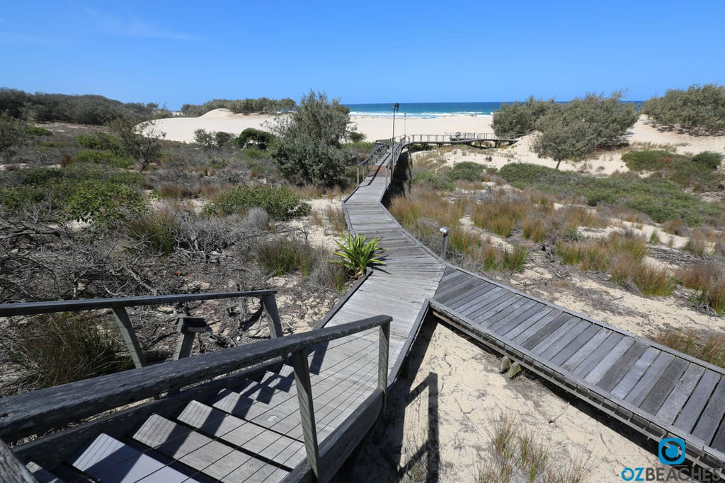 The walkway to the beach at South Stradbroke Island