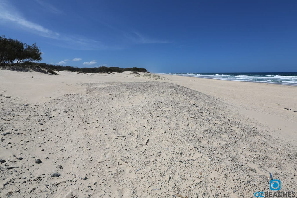 Looking north along the beach at South Stradbroke Island