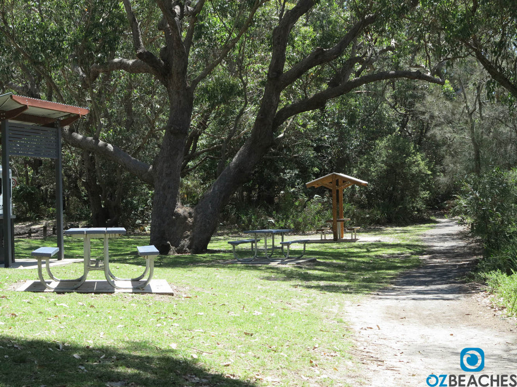 Nice picnic area at Tabourie Lake