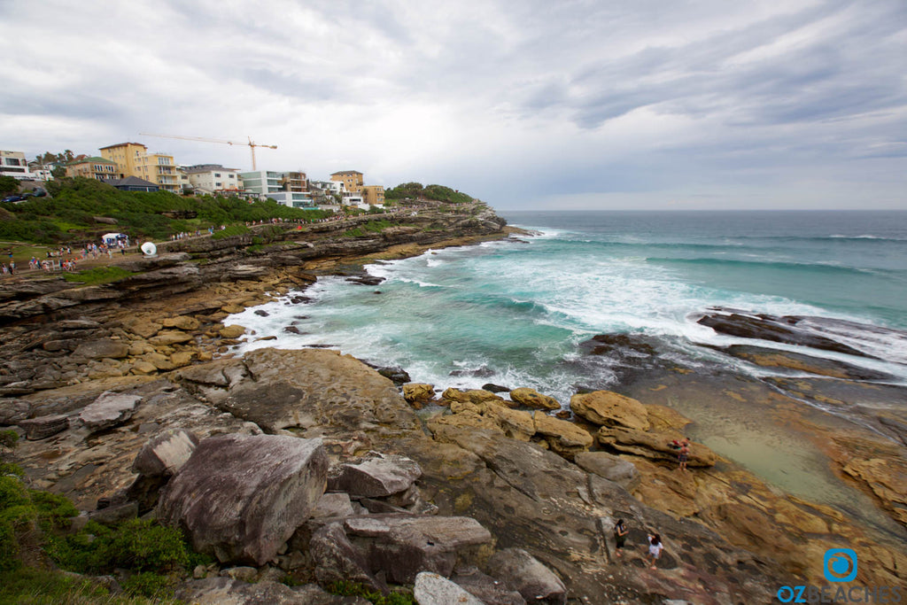A mysterious, sandy beach appearsat Mackenzies Bay near Tamarama Beach NSW approximately once every seven years