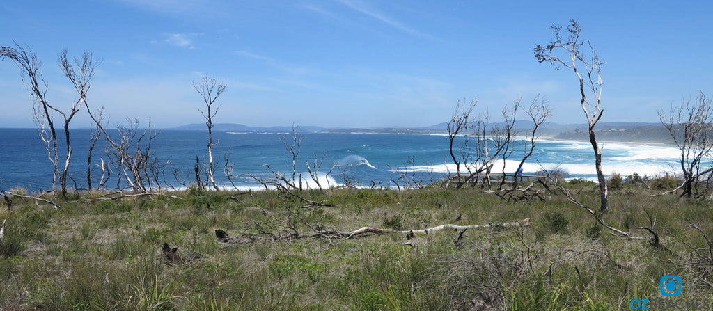 Perfect surf at The Bommie at Ulladulla NSW