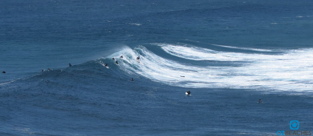 Surfer sropping into a wave at The Bommie at Ulladulla NSW