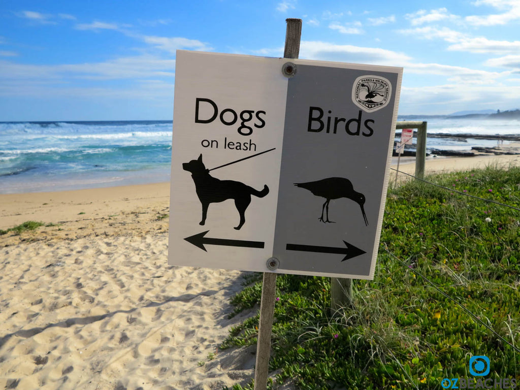 Dogs and birds sign at Warden Head at Ulladulla NSW